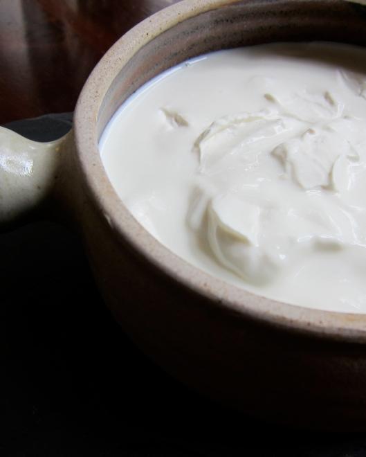 Yoghurt, a love story