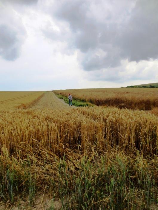 mum and wheat